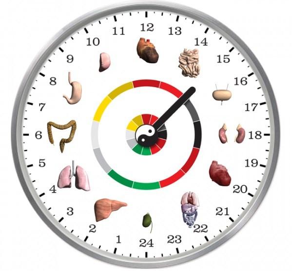 organove-hodiny_1600x900ms.jpg